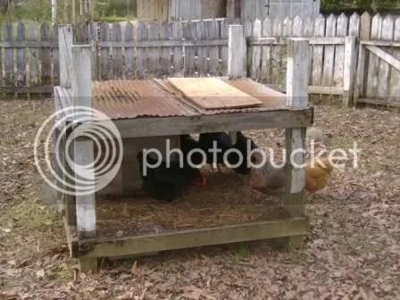 https://i0.wp.com/i187.photobucket.com/albums/x204/chicklady/shelter.jpg