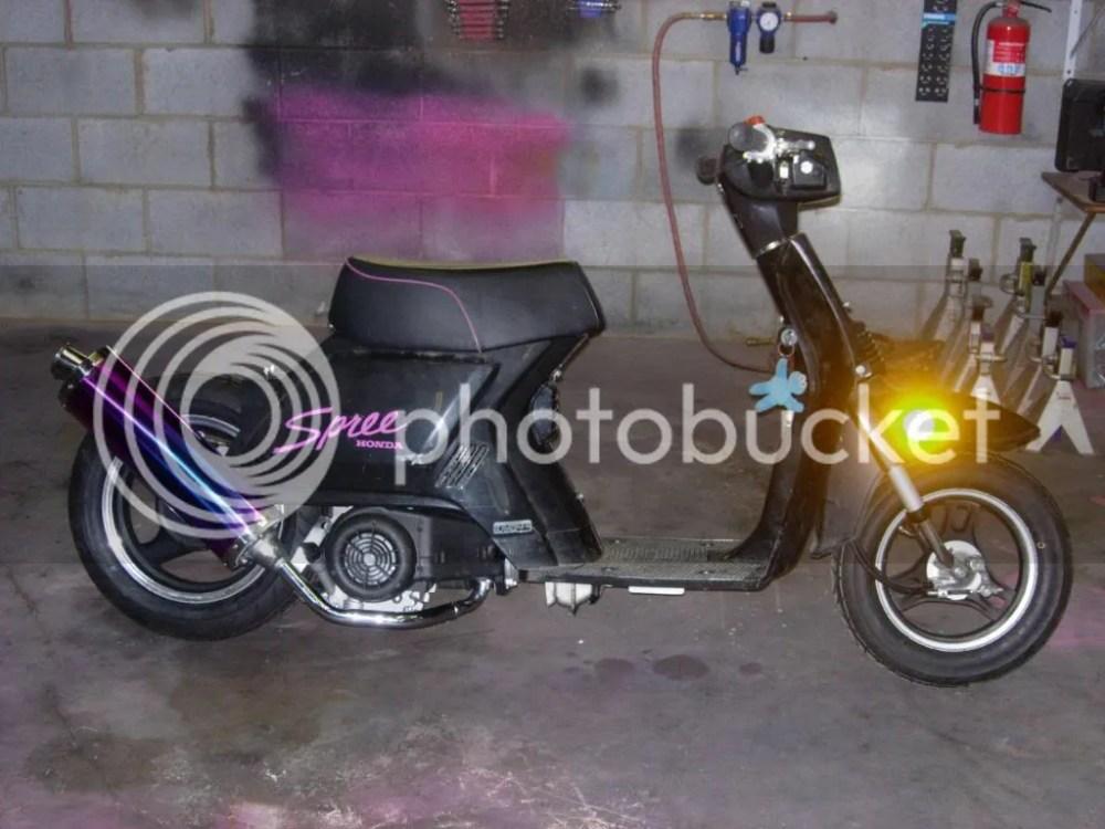 Honda Spree - honda spree motorcycles for sale