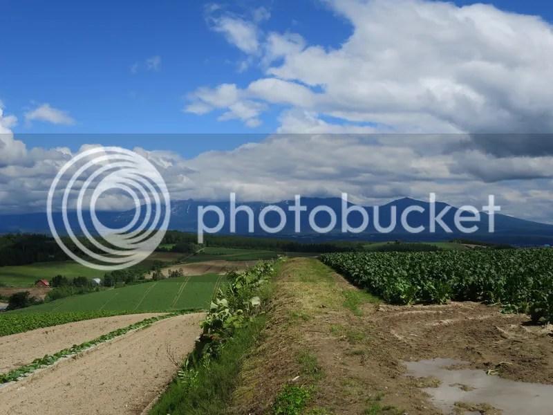 Biei slope road view