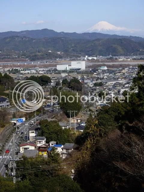 Fuji grows