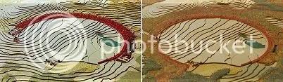 Crescent/Bowl of Embrace comparison