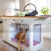 [Design] Camas criativas para animais de estimação