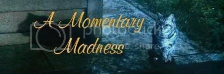 Momentary Madness banner
