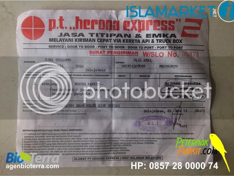 Resi Pak Ulil Amri - Mojokerto (30 pasang hijau dan 30 pasang non hijau) | 22 November 2012