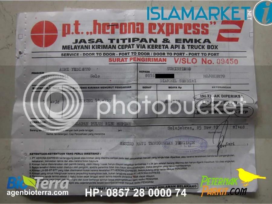Resi Pak Sumistiono Mojokerto | 5 November 2012