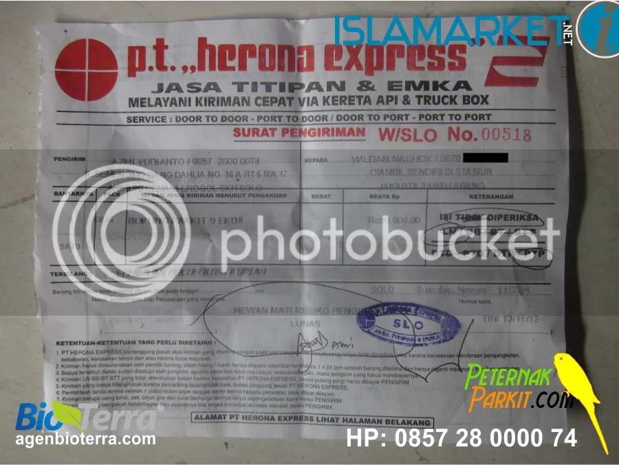 Resi Pak Wildan Nachdy - Jakarta | 13 November 2012