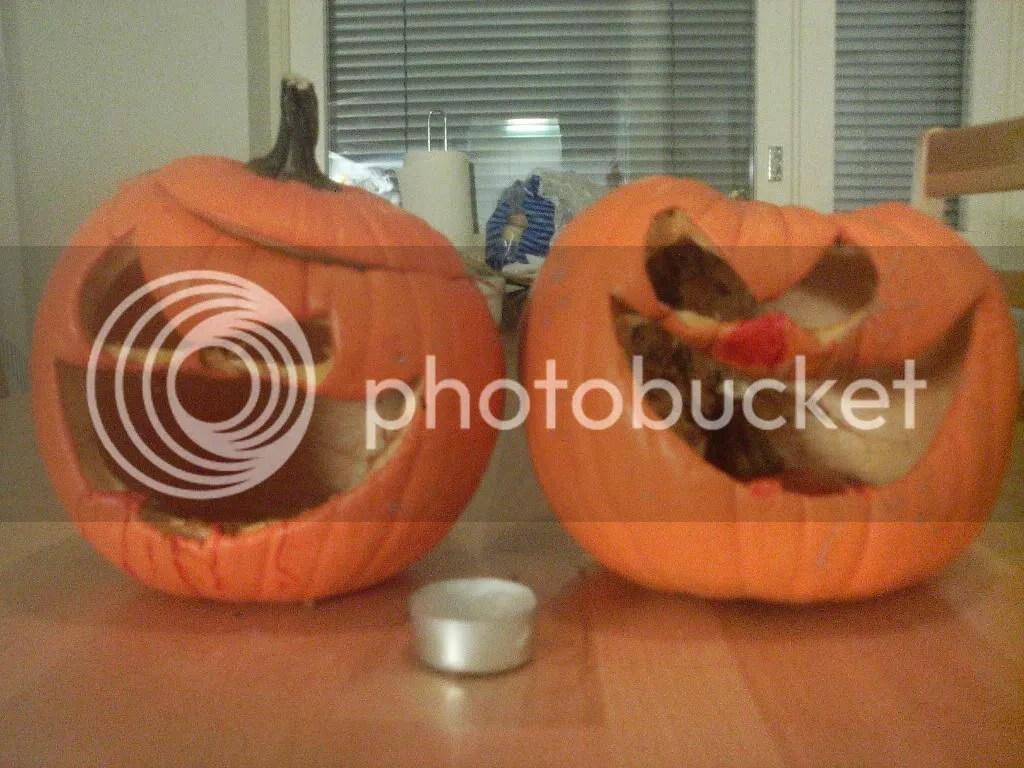 Halloween pumpkins gone bad