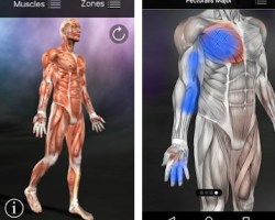 Download Muscle Trigger Point Anatomy Paid Application