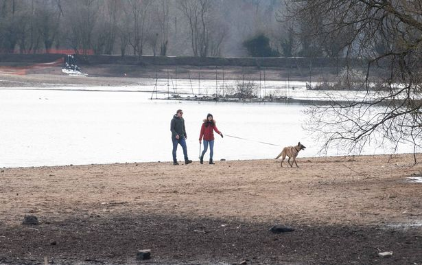 The reservoirs at Earlswood Lakes are being partly drained ahead of a £1.6 million improvements programme that will take more than six months to complete