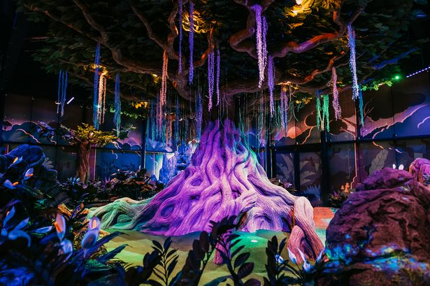 Enter a world of fun inside The Mystic Wood at Treetop Adventure Golf in the Bullring
