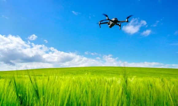 A Mavic 2 drone over a field of barley. Farmers are increasingly using drones and apps such as Skippy Scout to autonomously capture and interpret images of crops