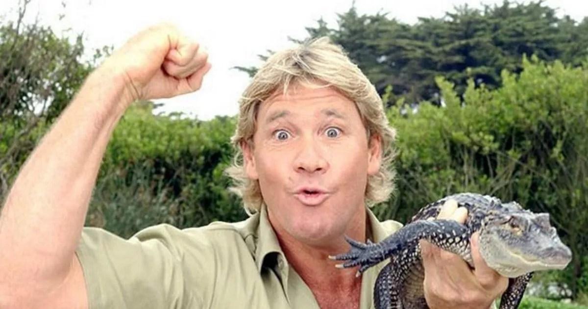 Steve Irwin death: How did Steve Irwin die? Crocodile ...
