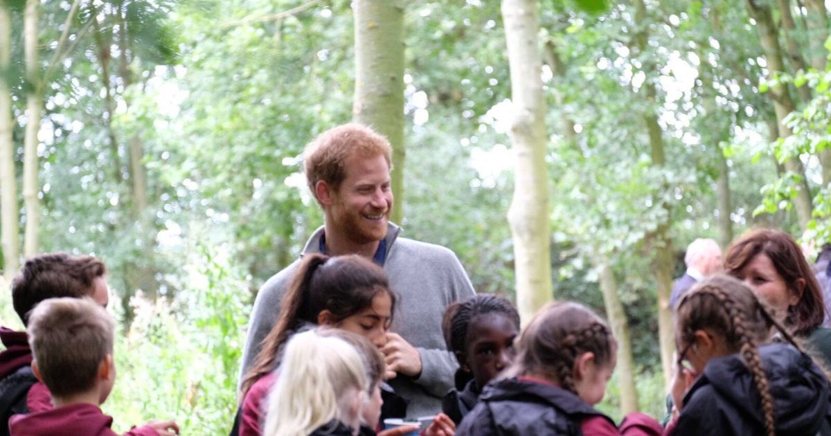 This is what it was like to meet Prince Harry in Chelmsford