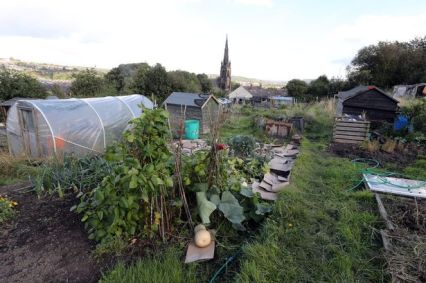 Cemetery Road Allotments, Birkby.