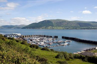 Image result for Carlingford drowning