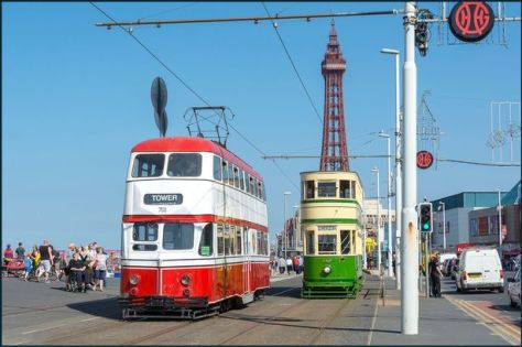 Two heritage trams in front the famous Blackpool tower