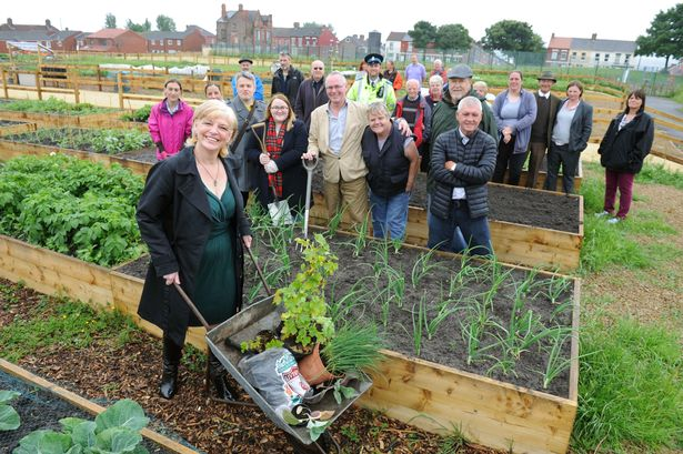 liverpool allotments how to