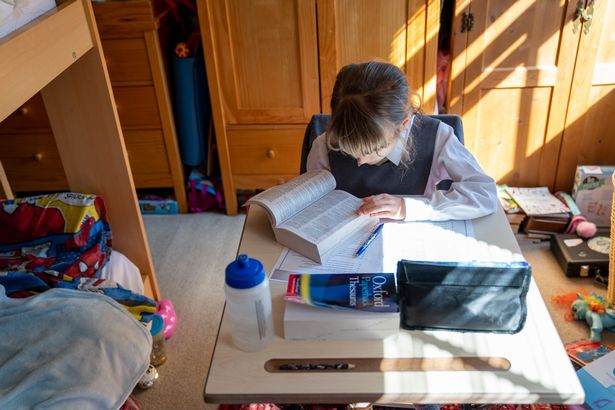 A child is studying at home during the lockdown.