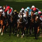 Horse Racing Jokes The Funniest Horse Racing Gags All In One Place Mirror Online