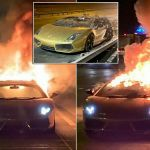Driver Gutted As 125k Lamborghini Goes Up In Flames An Hour After Picking It Up Mirror Online