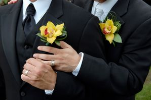 Gay Marriage Latest News Updates Pictures Video