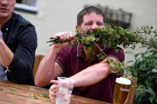 Man becomes World Stinging Nettle champion after devouring 58ft of ...