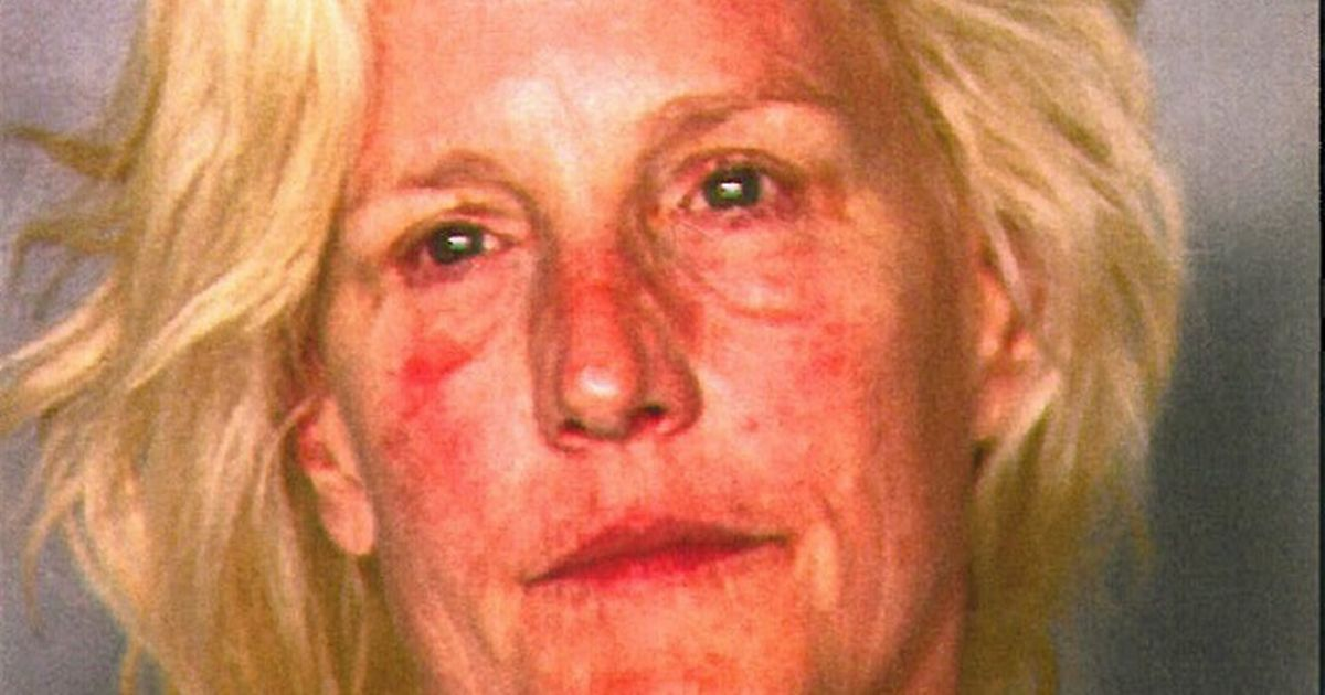 Eco Warrior Erin Brockovich Pictured In Police Mugshot