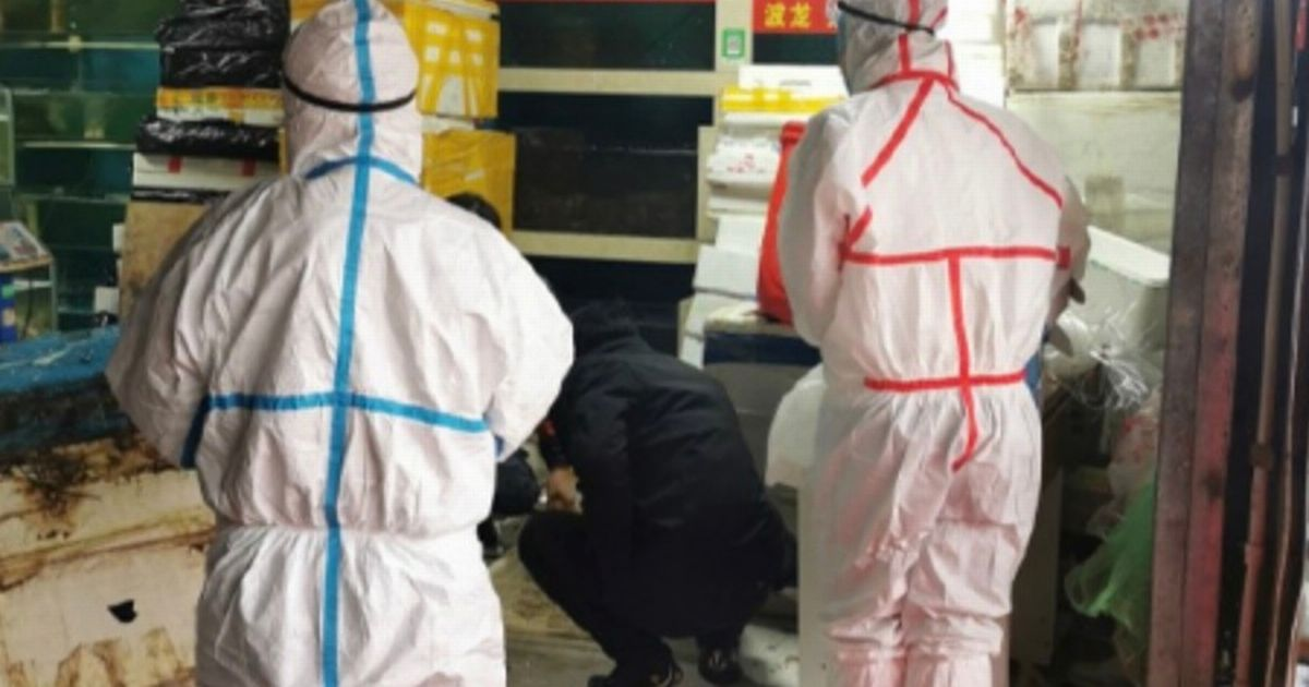 """The mysterious virus infects 59 people in China and leaves seven """"critics"""" - World News"""
