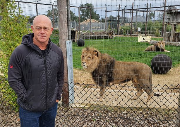British Tiger Kings - On the track with Ross Kemp will debut next Tuesday on ITV at 9pm