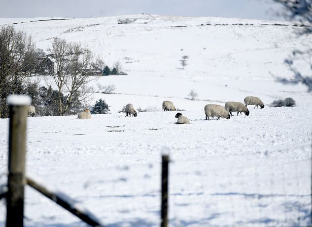 Snow in Ramsbottom and surrounding areas
