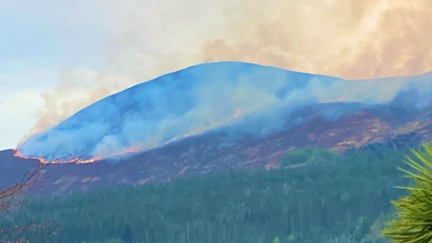The fire will have a devastating impact on wildlife and flora