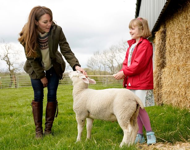The Duchess playing with the lambs with Clover Chapman, 9