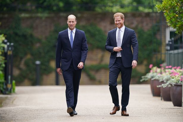 Prince Harry and Prince William have reunited today for the unveiling of Diana's statue