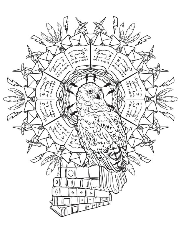 Adult colouring book wizards can now get their wands on a