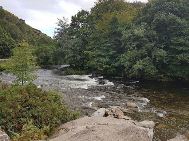 Beddgelert - the Welsh village with a shaggy dog's tale at its heart