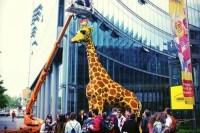 Birmingham Legoland work can start after green light ...