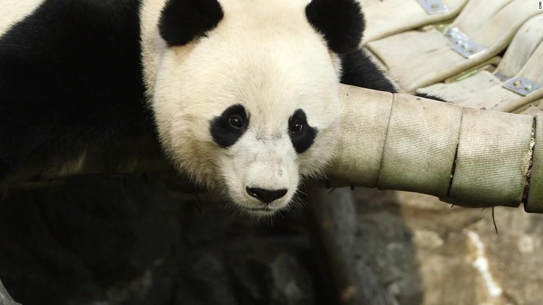 Bao En China