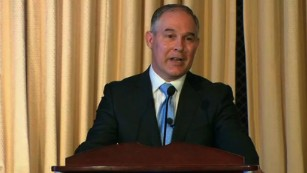 EPA Chief denies carbon is a pollutant