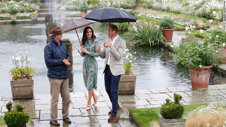 Princes William and Harry paid tribute to their mother on the eve of the 20th anniversary of her death by visiting the Sunken Garden to honor her work with charities.
