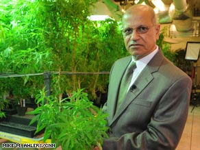 Mahmoud ElSohly says marijuana's potency will continue to rise before tailing off in the next five years.