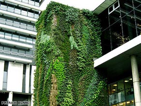One of Patrick Blanc's green walls on the Hotel du Department in Hauts-de-Seine, France.