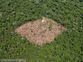A deforested area appears in a rain forest in Brazil's Para state  in October.