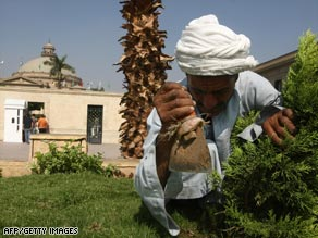 A gardener tidies up at Cairo University where President Obama is scheduled to make his speech.