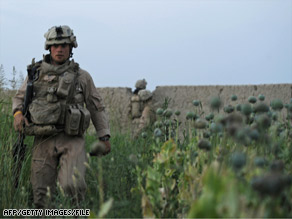 A U.S. Marine walks in a poppy field in southern Helmand Province, Afghanistan, last year.