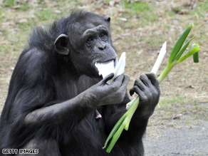 In the wake of a highly publicized chimpanzee attack, the House made its first official move to ban humans from owning primates as pets.