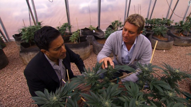 The brothers started the <a href='http://realmofcaring.com/' target='_blank'>Realm of Caring Foundation</a>, a nonprofit organization that provides cannabis to adults and children suffering from a host of diseases. Here Josh Stanley, right, gives CNN's Dr. Sanjay Gupta a tour.<!-- --><br /> </br>