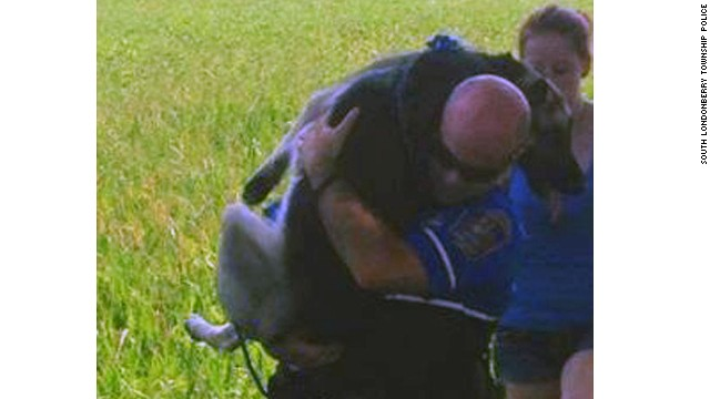 South Londonberry Patrolman Nick Ague carries a German Shepherd who was injured after running away from a car accident.