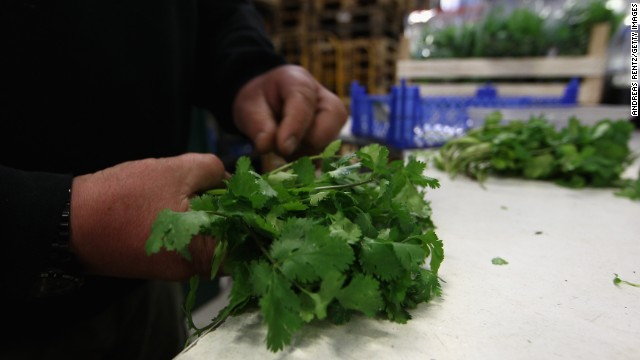 Because cilantro isn't an essential crop, using it as a purifier won't take away from people's food needs in Mexico.
