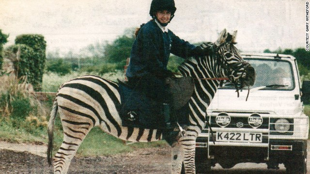 Image result for riding zebras pictures