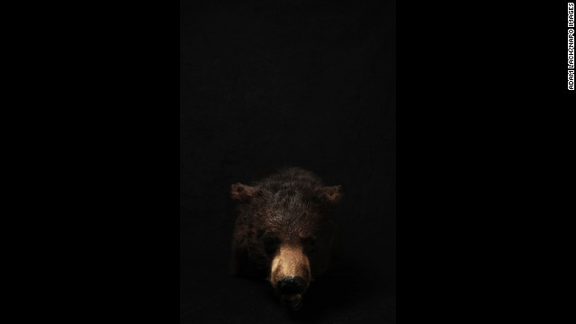 """Lach used a black background for some of his photos. """"I wanted to isolate these exhibits to give them the rank of authenticity and pain,"""" he said."""
